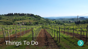 Things to do in Borgo di Gaiole