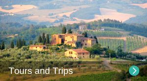 Tours and trips in Borgo di Gaiole